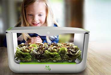 果蔬种植机设计,都市农业的创新未来